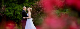 Bloomington Normal IL Wedding Photographer